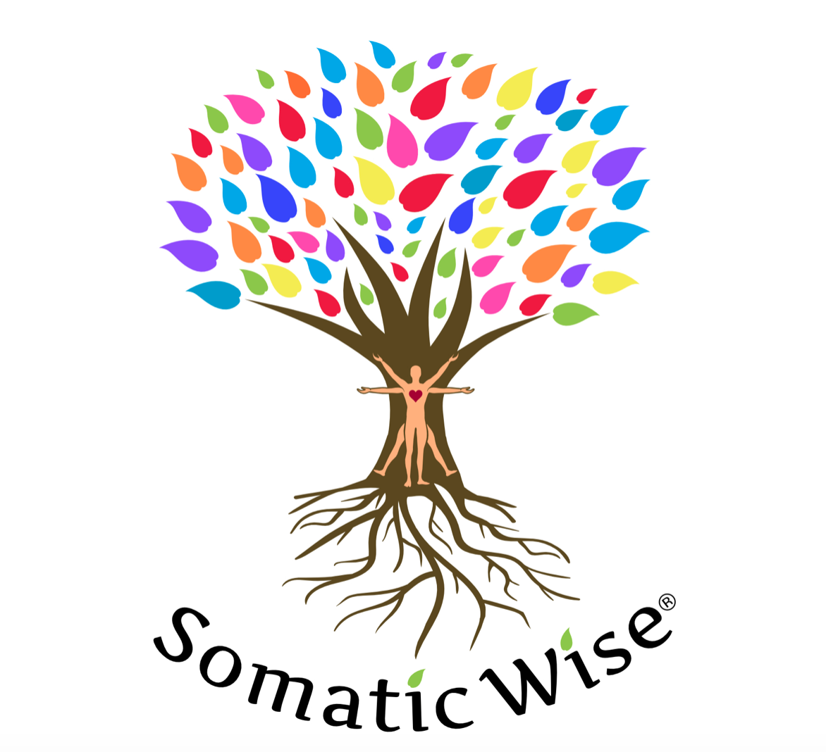 SomaticWise-mixed-rainbow-logo